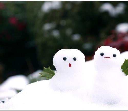 冬休み 画像