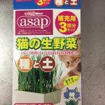 猫の生野菜(キャティーマン)使ってみた感想や使用感は?